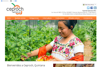 Web site for Ceproch Quintana Roo